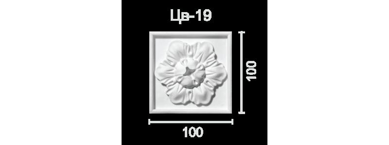 Цветок ЦВ-19