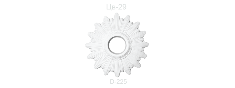 Цветок ЦВ-29